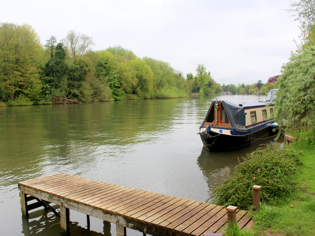 River Thames between Maidenhead and Cookham by boxplayer