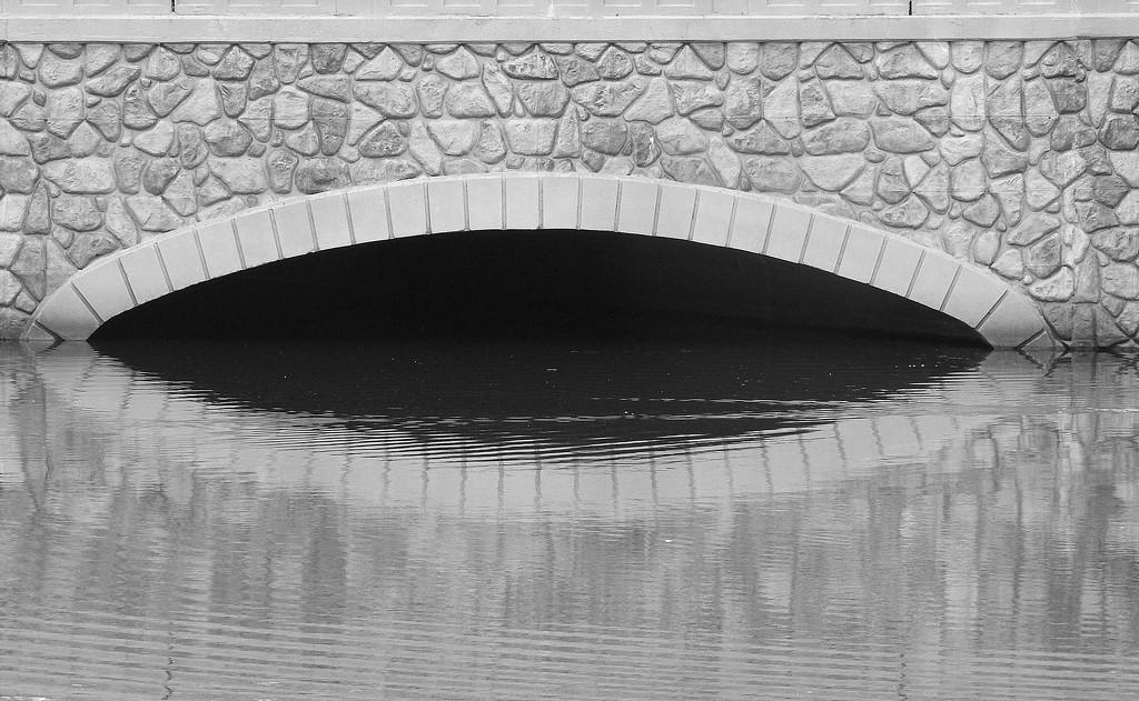 Half and half bridge and reflection by homeschoolmom