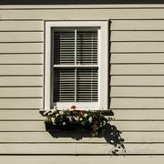 3rd May 2018 - Window Box