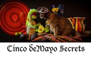5th May 2018 - Happy Cinco deMayo !