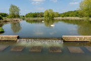5th May 2018 - Melton Country Park