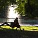 Afternoon at Hampton Park