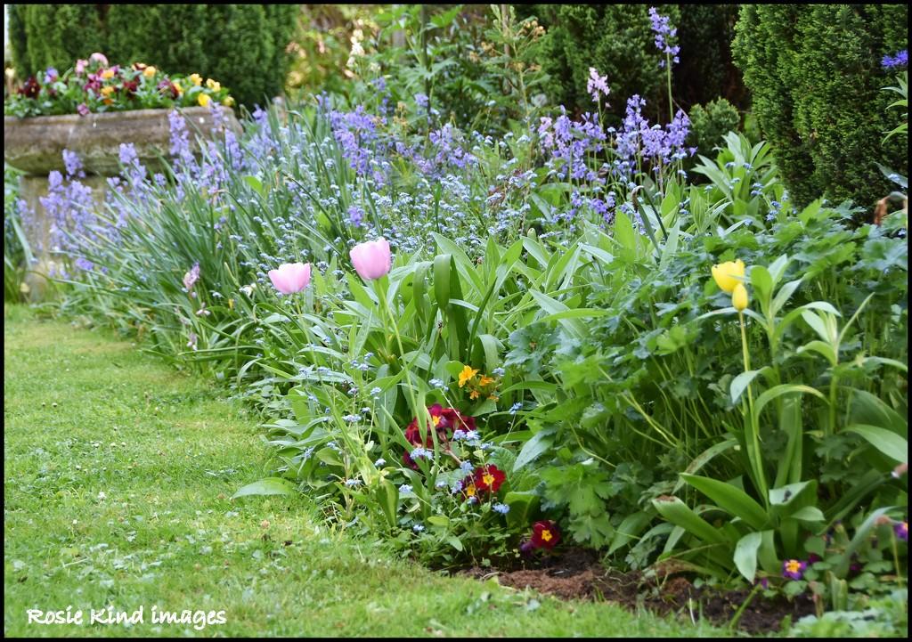Our spring garden by rosiekind