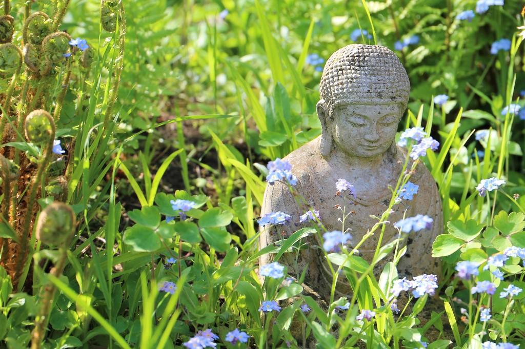 Meditation by phil_sandford