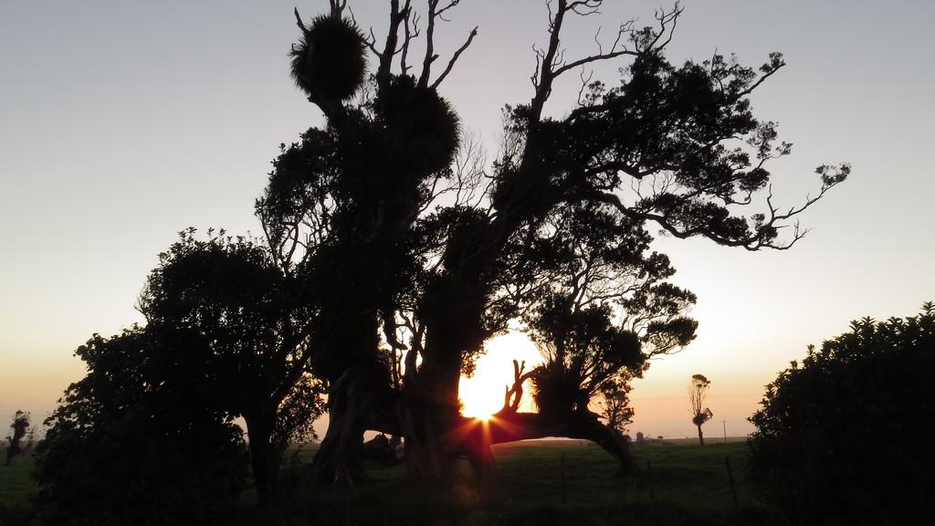edge cut setting sun  by kali66