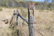 9th May 2018 - old boundary line fence