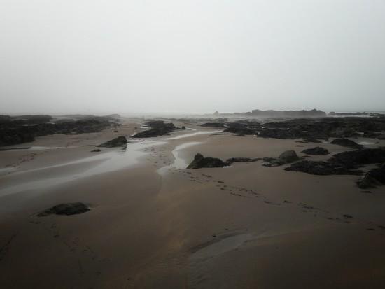 Widemouth Bay. by blightygal