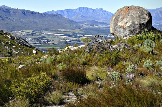 Another view over the Drakenstein Mountains by judithdeacon
