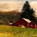 Rustic Rolling Hills Farm