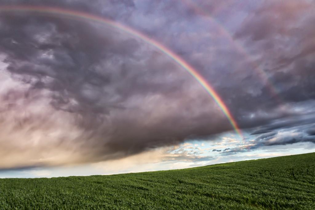 Double Rainbow in the Palouse by taffy