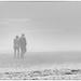 foggy walk on the beach