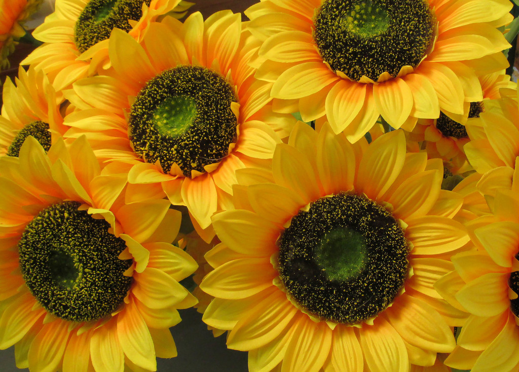 Happy artificial sunflowers by mittens