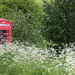 Red Telephone Box, Blackford by dorsethelen