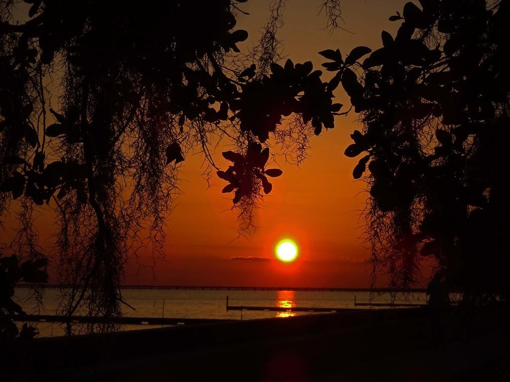 Sunset  by dmdfday