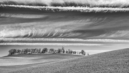 Layers in Nature - v2 B&W by taffy