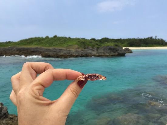 It was a crab ... by cocobella