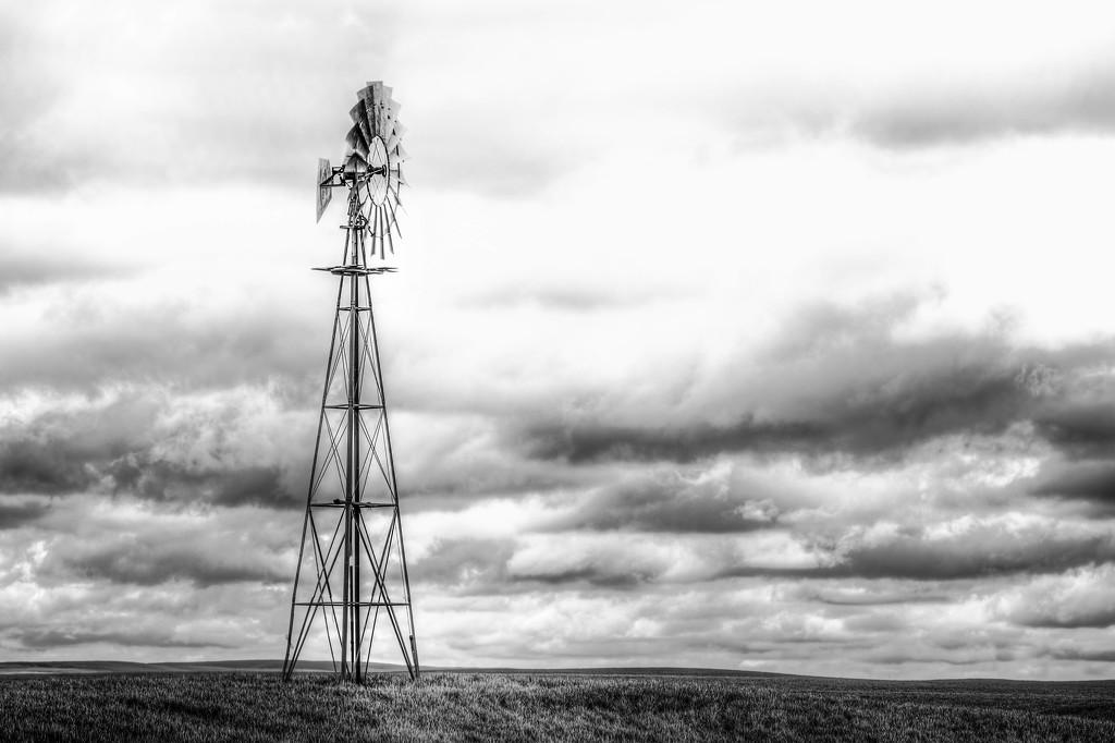Lone Windmill by taffy