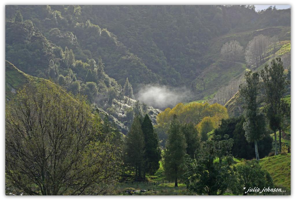 Mohakatino Valley .. Last of the Autumn colour.. by julzmaioro