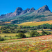 Autumn in the Winelands.....