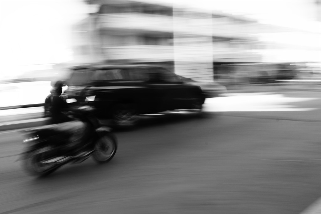 Motion in  BW by judyc57