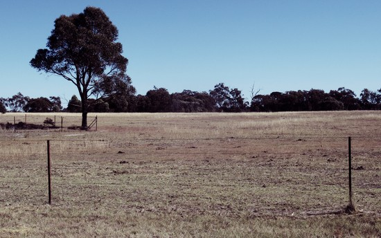 A very dry landscape.. by robz
