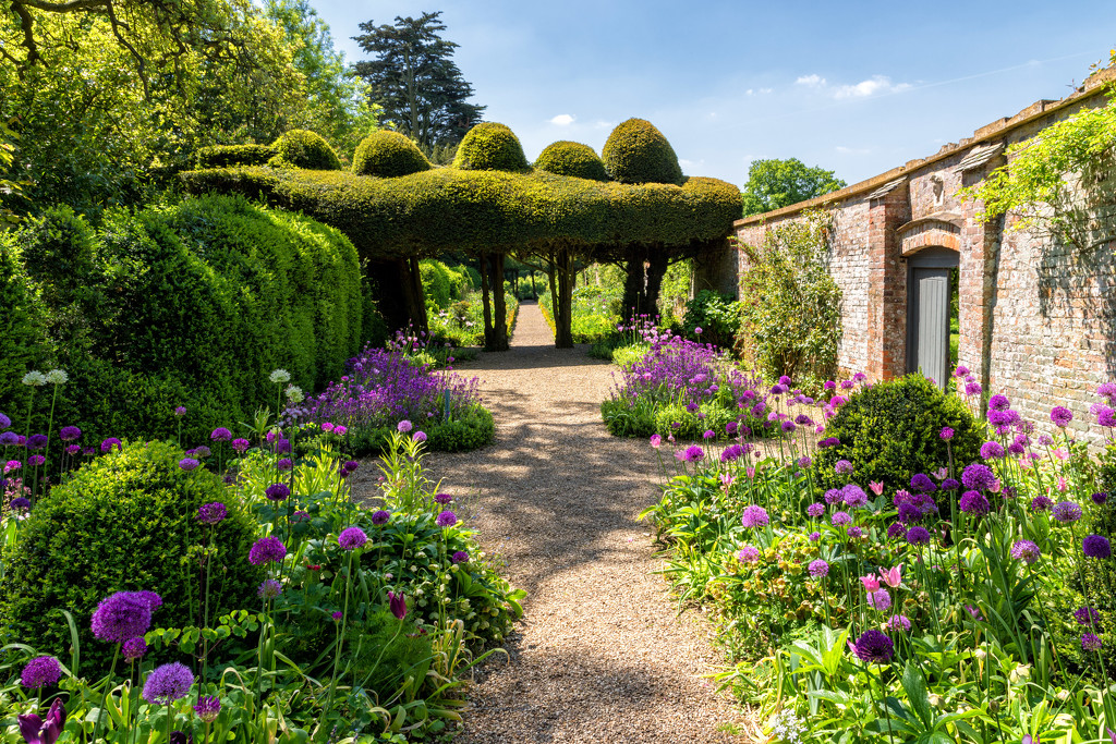 English Country Garden  by rjb71