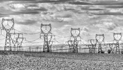 20th May 2018 - Pylons Go Marching