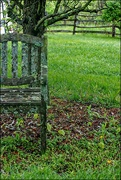 21st May 2018 - A Chair Under the Tree
