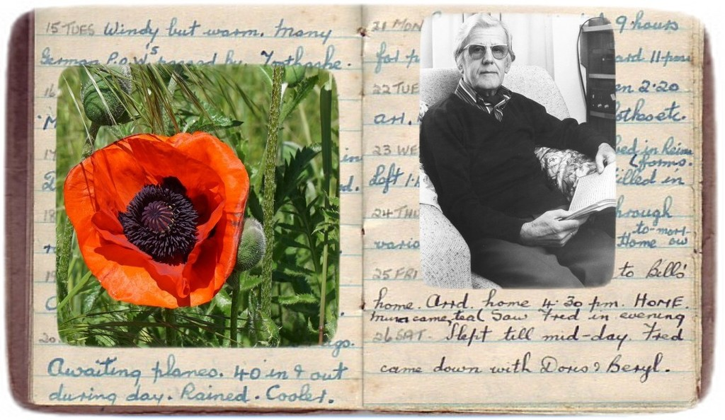 a poppy for 25th May 1945.... by quietpurplehaze