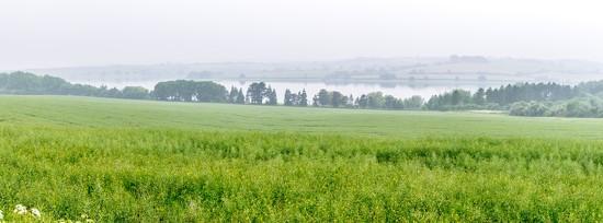 Misty Vista by rjb71