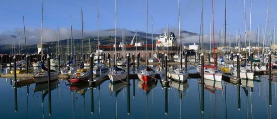 Lyttelton Harbour's new marina by maureenpp