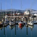 Lyttelton Harbour's new marina by maureenpp