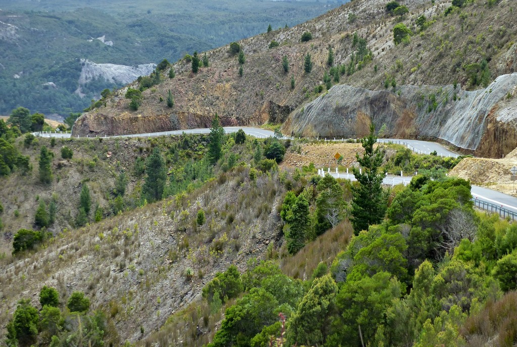 The long and winding road to Queenstown by judithdeacon