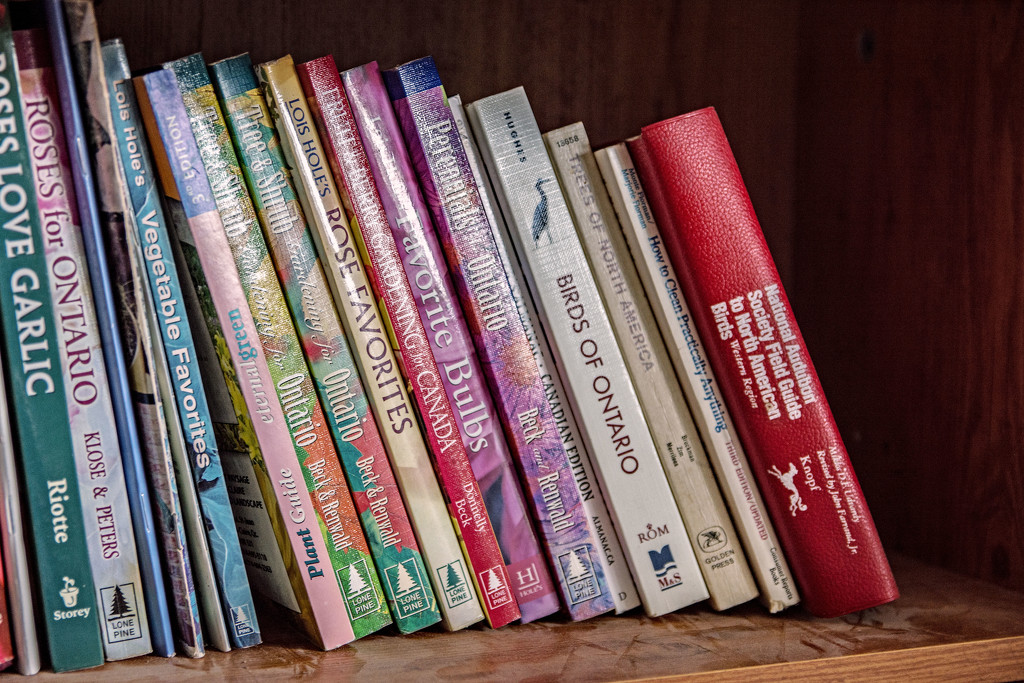 May Words - Books by farmreporter