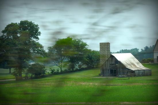 Photobombed by prairie grass! by homeschoolmom