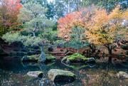 27th May 2018 - Japanese Gardens