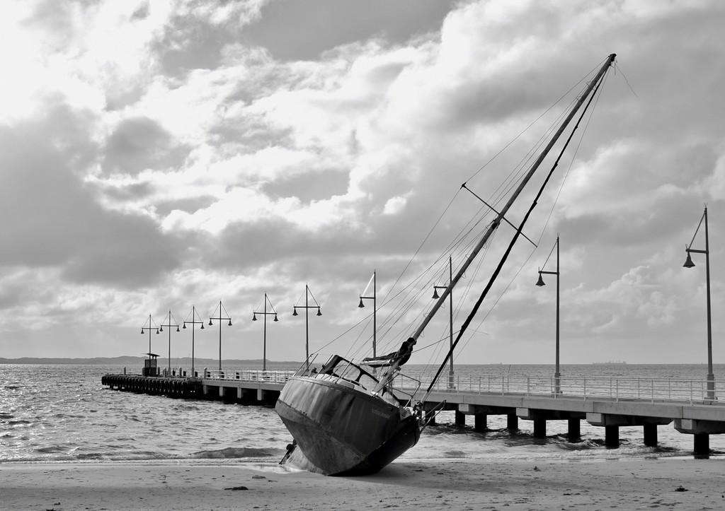 Beached_DSC9846 by merrelyn