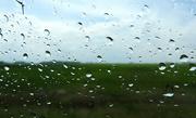 25th May 2018 - Half and half raindrops