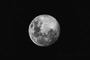 28th May 2018 - Moon Shot