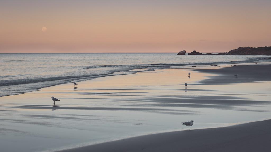 Dusk at Meelup beach by jodies
