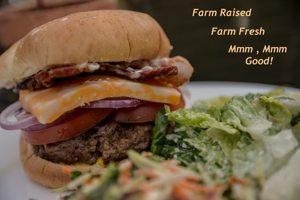 May Words - Hamburger by farmreporter