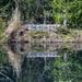The Kerr Pond
