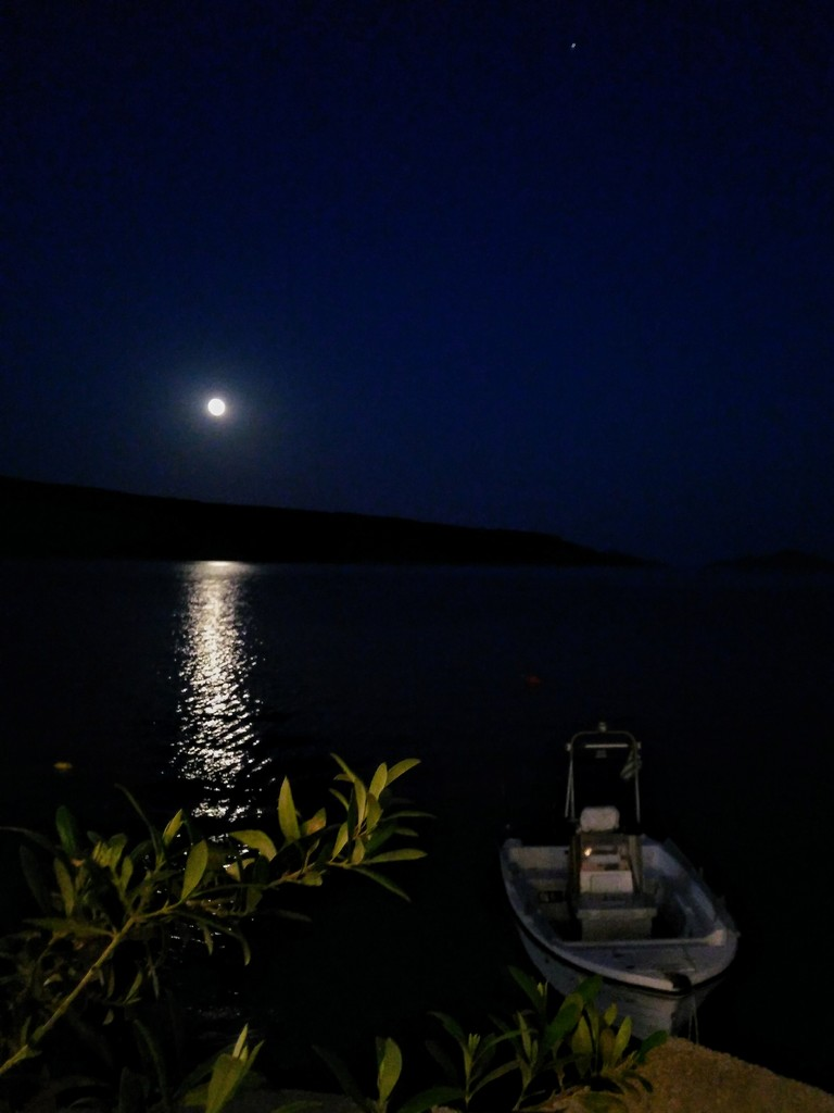 Moon, planet, boat, olive branch by 30pics4jackiesdiamond