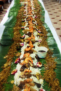 28th May 2018 - Boodle Fight