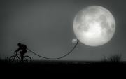 30th May 2018 - i bring you the moon