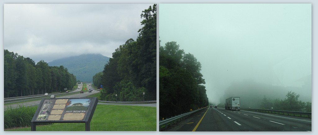 Unedited Fog Collage by homeschoolmom