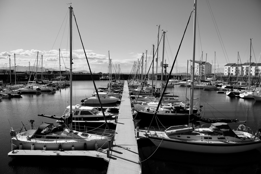 137/365 - If only I could just sail away... by wag864