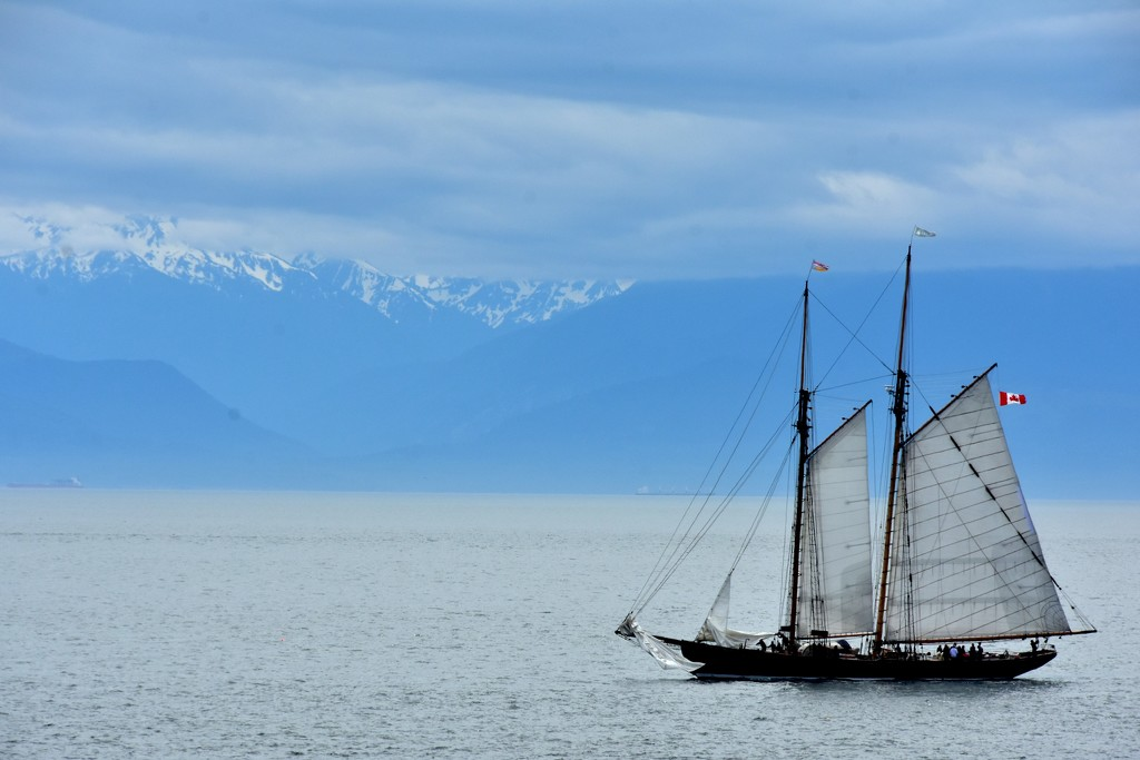 Sailing by jayberg