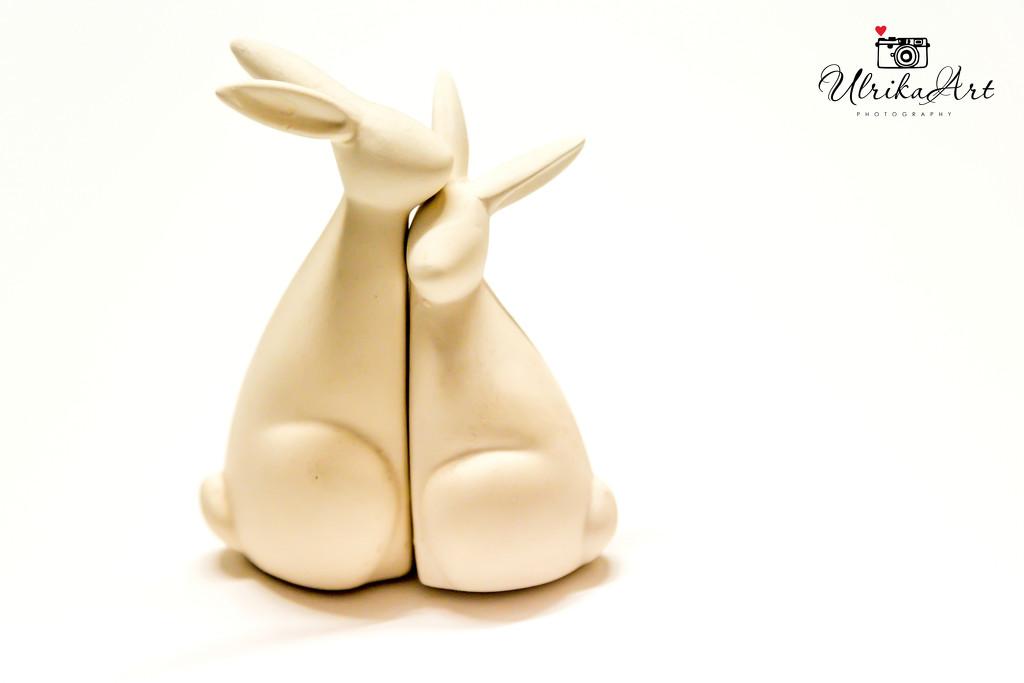 high key bunnies by ulla