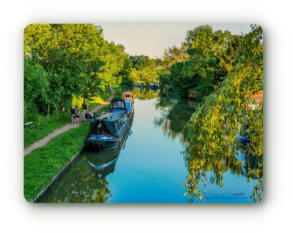 Evening Light On The Canal by carolmw